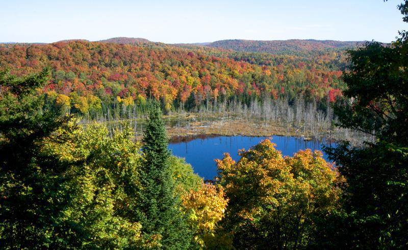 Lac-Amigo-automne