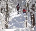 parc-regional-hiver