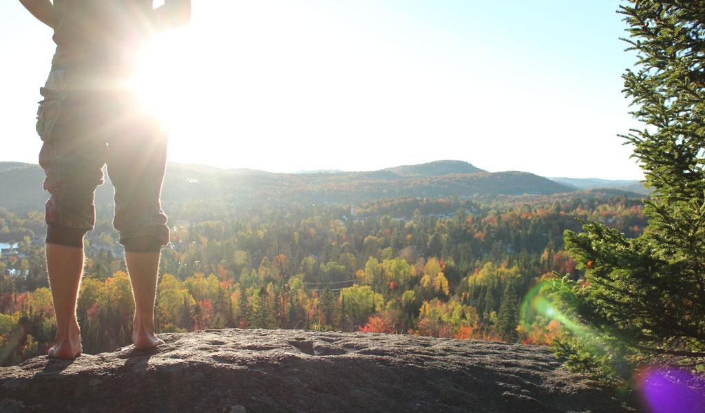 parc-regional-vue-automne